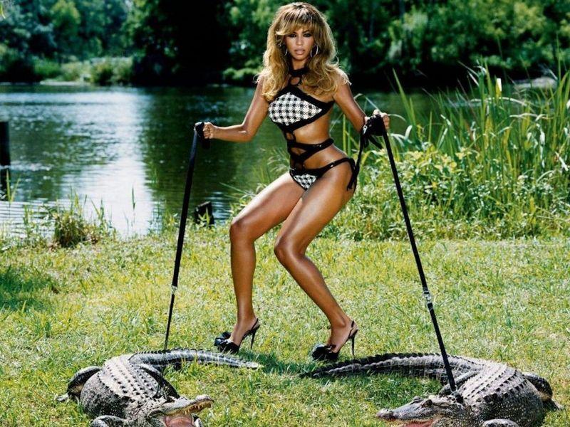 Beyonce_crocodile_1024x768